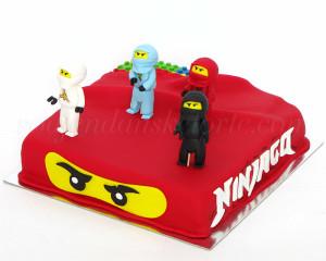 Četiri ratnika su čuvali tortu sve dok slavljenik nije rekao da je dosta :)