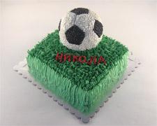 orta-u-obliku-fudbalske-lopte-na-travi-na-sprat