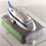 torta-avion-na-pisti