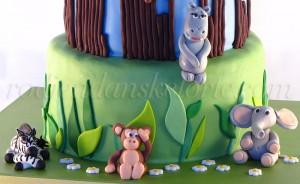 torta-dzungla-detalji