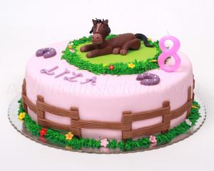 Za one koji su nekada maštali da imaju svog konjića :)