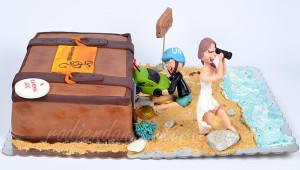 Torta, kao deo životne priče